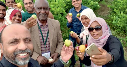 Seedless Lemon farm visit